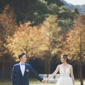 落羽松森林證婚 拍攝提供@野人寫真